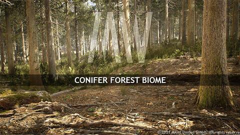 MW CONIFER FOREST BIOME