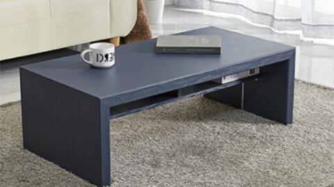 Lien shelf storage living room/sofa table