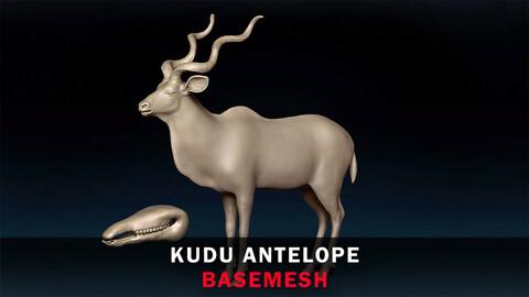Kudu Antelope Basemesh 3D model