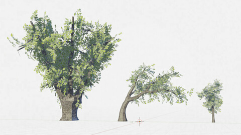 Blender pack: 3 trees + textures + wood textures