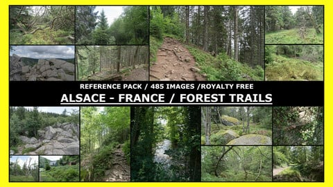 ALSACE - FOREST TRAIL & HIKE  / Photo Reference / 485+ images