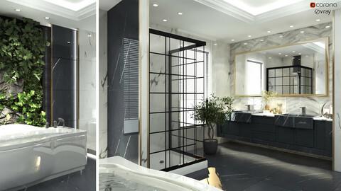 bathroom interior scene 011