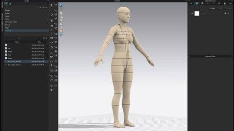 Realistic avatar-mannequin for Clo3D Size 36 EU