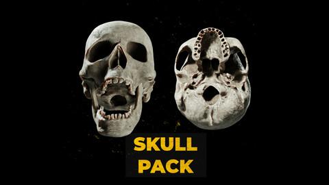 Human Skull Pack - Free Sample