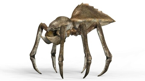 Monster Spider With PBR Textures