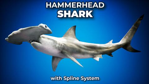 Hammerhead Shark UE4 3DS FBX OBJ MAX Octane Support