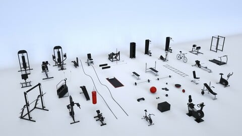 Massive Gym Equipment Collection