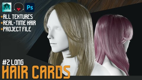 Hair CARDS : Long Hair Style + Obj Real- time Hair Style + Process Files
