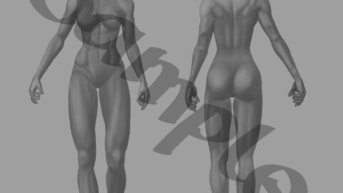 Character creation template for fit / athletic female characters