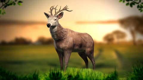 Animated Lowpoly Deer