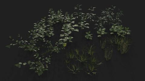 Ground Foliage - Vol.2