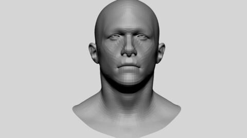 Male Head Basemesh 02