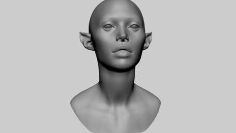 Female Creature Head Basemesh