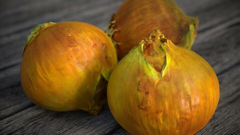 Onion 3D scan