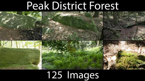 PhotoRef - Peak District Forest