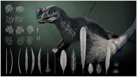 Prehistoric Feathers and Fur IMM Brushes