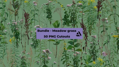 PNG Photo Pack: Meadow grass