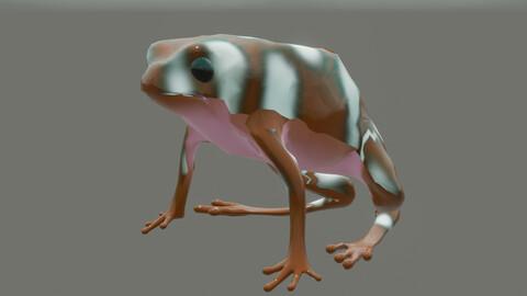 frog Excidobates mysteriosus