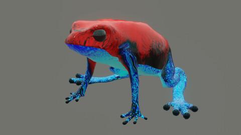 frog Oophaga pumilo
