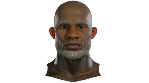 Chris Realistic model of male head