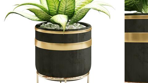 plant in vase 129