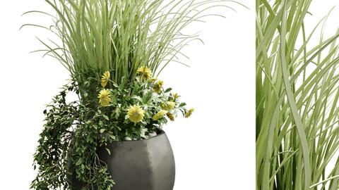 plant in vase set 131