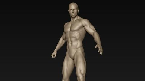 Male Full Body Sculpt Pose 14