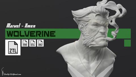Wolverine - Marvel X Men