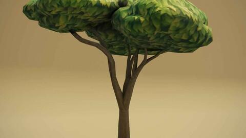 Cartoon Acacia Tree 3D Model