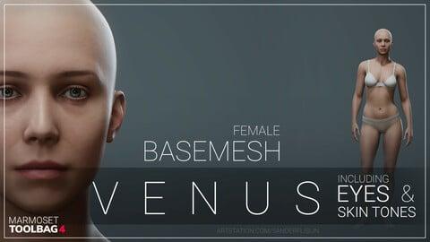 Female Basemesh: Venus