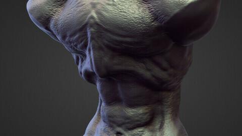 TORSO4 high poly sculpt