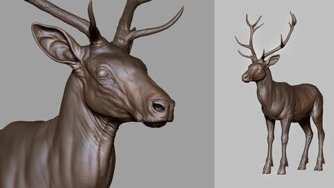 DEER - sculpt/retopology/uvs
