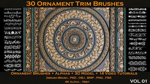30 Ornament Trim Brushes + Alphas + 3D Model + 14 Video Tutorials (VOL 01)