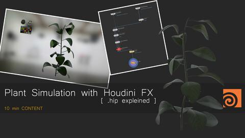 CFX Quick Houdini Tutorial 01 - Plant Simulation