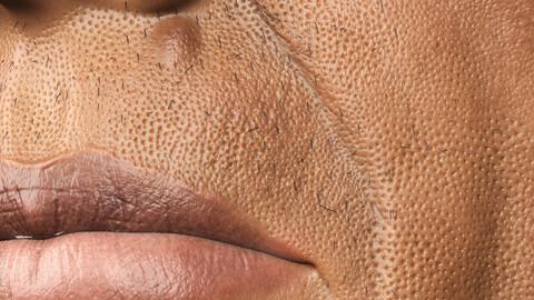 pores brush (zbrush)