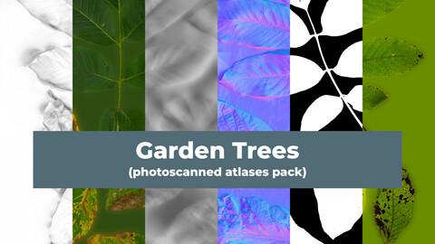 Garden Trees (photoscanned atlases pack)