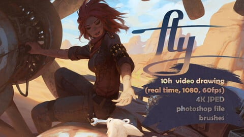 FLY - full video 10h (real time, full HD 60fps) - 4k image - PSD - Brushes