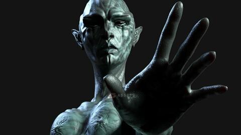 Realistic Alien Creature Rigged