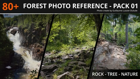 80+ Temperate Forest Reference Pack 01