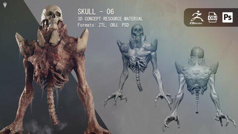 Skull 06 - Resource Material