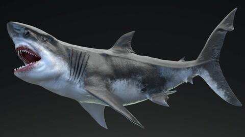 MEGALODON - Sea Monster Series 5