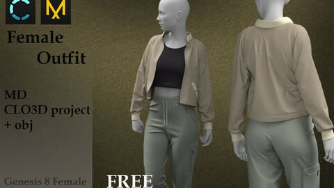 Female Outfit Free 3D model