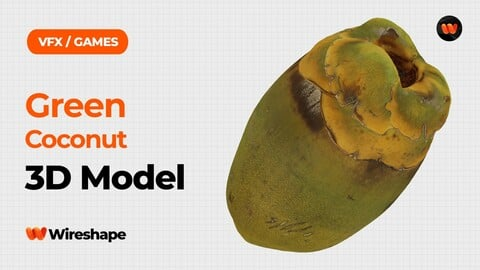 Green Coconut Raw Scanned 3D Model
