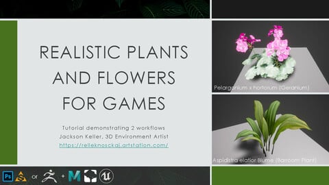 Realistic Plants and Flowers for Games