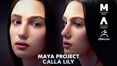 Calla Lily Maya Project