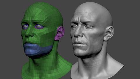 European male head 3d model