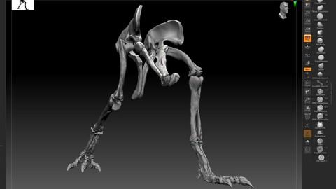 Spinosaurus 2020 version Hip Leg Set Skeletons  Sculpt Project