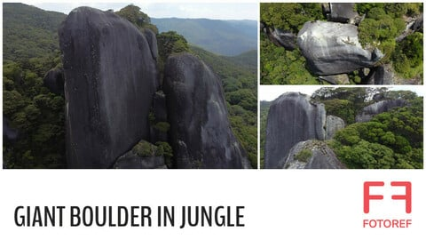 260 photos of Giant Boulder in Jungle