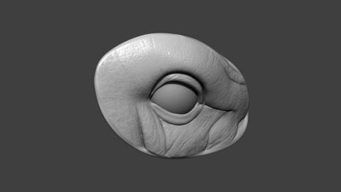 Rhino Eye Socket Highpoly Sculpt