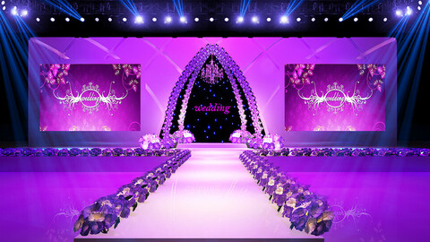 Stage party concert fashion catwalk T station  152